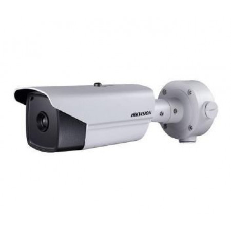 IP камера Hikvision DS-2TD2136-25